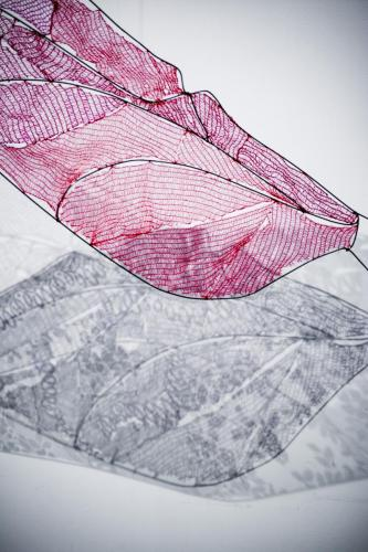 libellenflügel01.2018 2