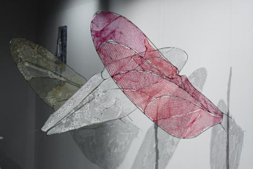 libellenflügel01.2018 5